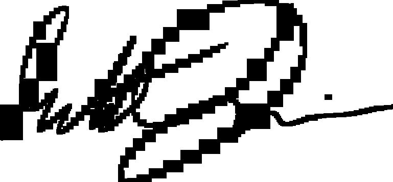Michał Dunin signature